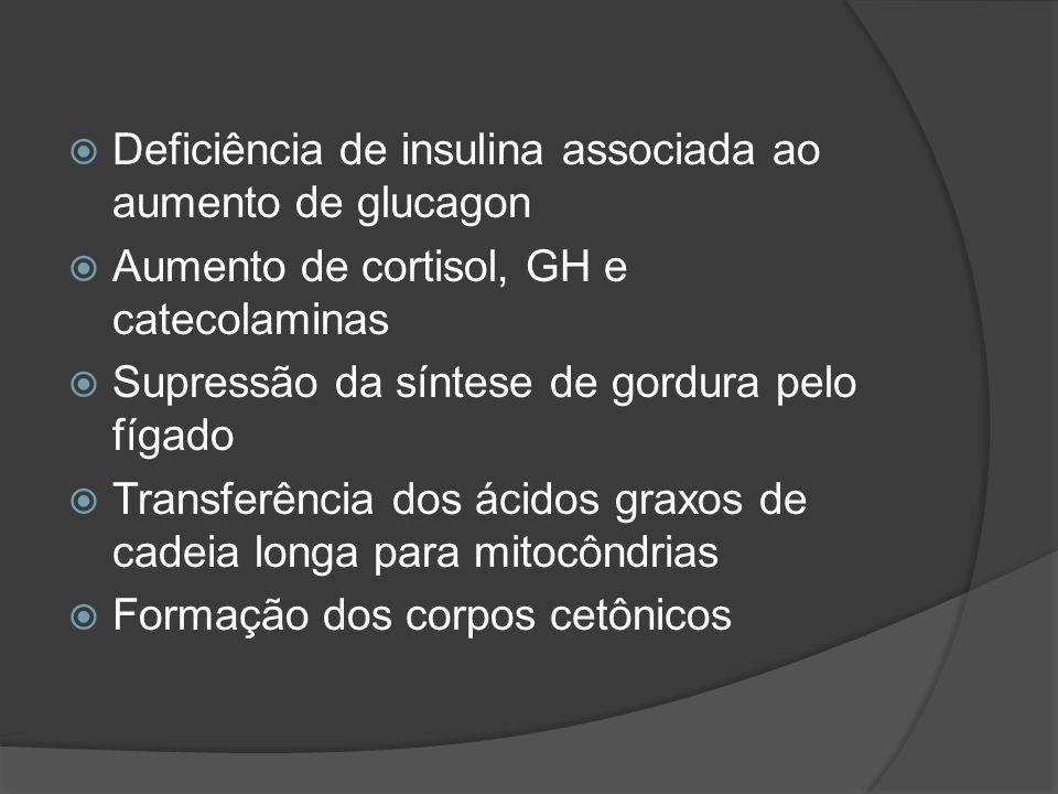 Deficiência de insulina associada ao aumento de glucagon