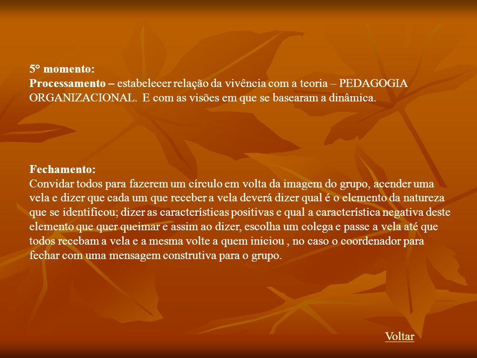 5° momento: Processamento – estabelecer relação da vivência com a teoria – PEDAGOGIA ORGANIZACIONAL. E com as visões em que se basearam a dinâmica.