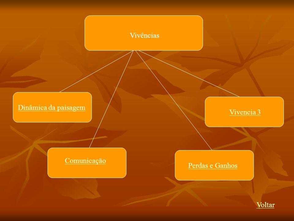 Vivências Dinâmica da paisagem Vivencia 3 Comunicação Perdas e Ganhos Voltar