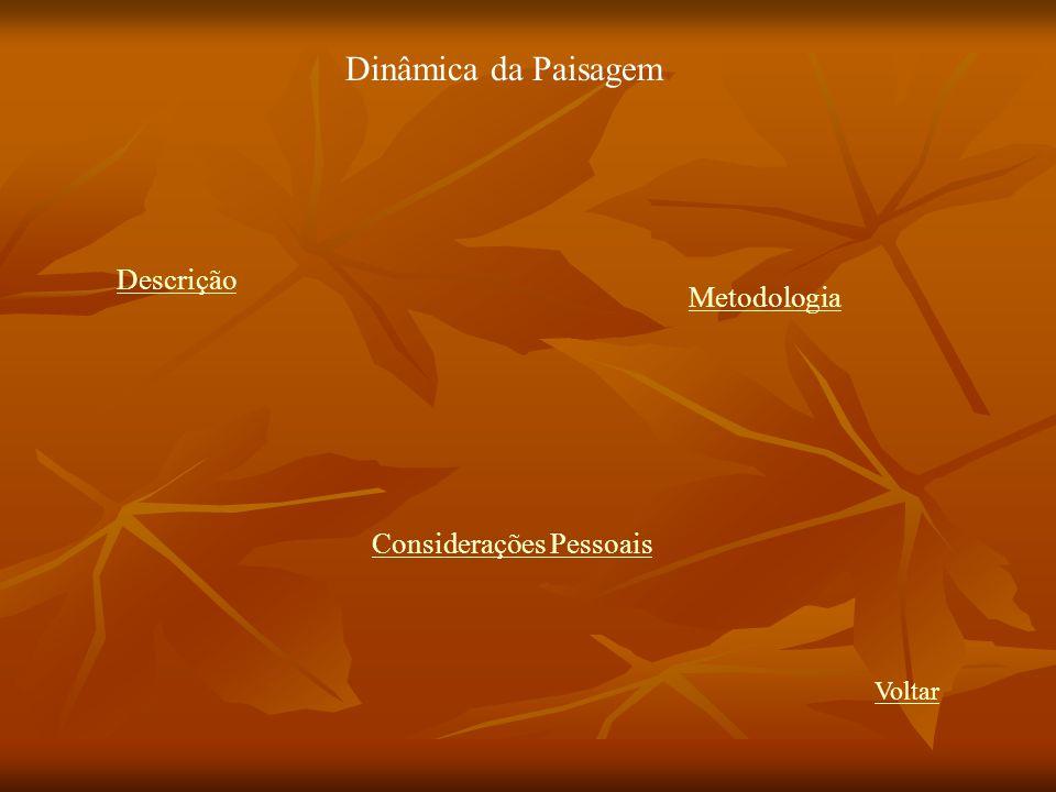 Dinâmica da Paisagem Descrição Metodologia Considerações Pessoais
