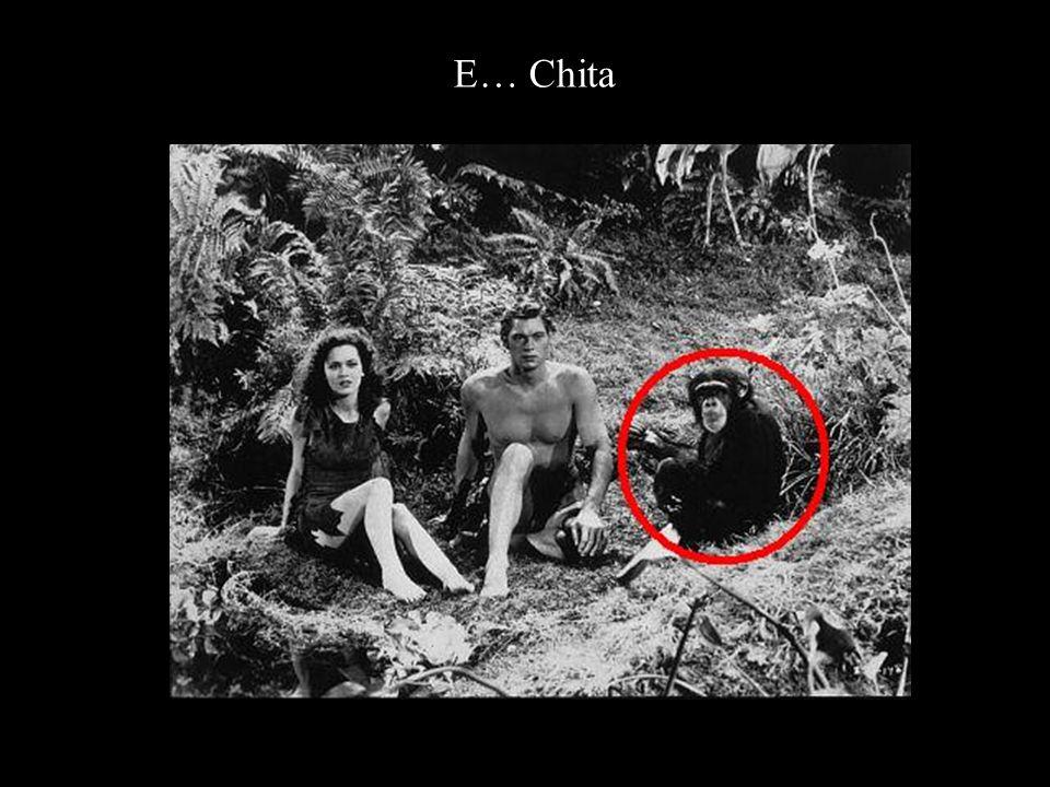 E… Chita