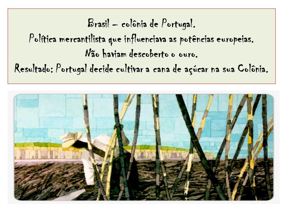 Brasil – colônia de Portugal