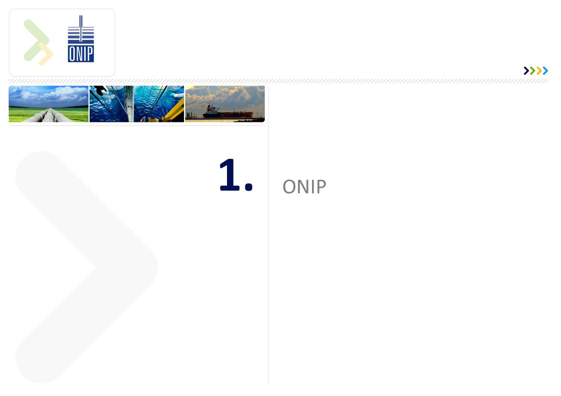 1. ONIP