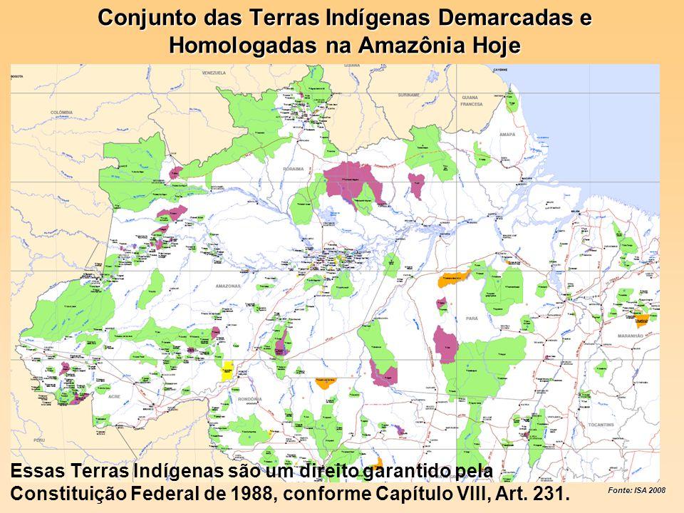 Conjunto das Terras Indígenas Demarcadas e Homologadas na Amazônia Hoje