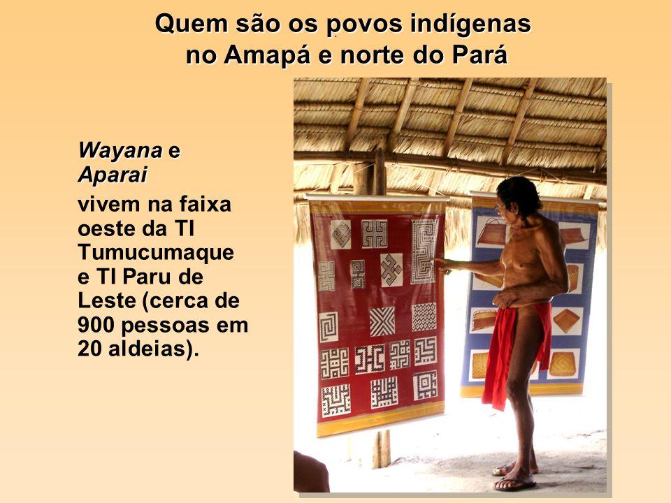 Quem são os povos indígenas
