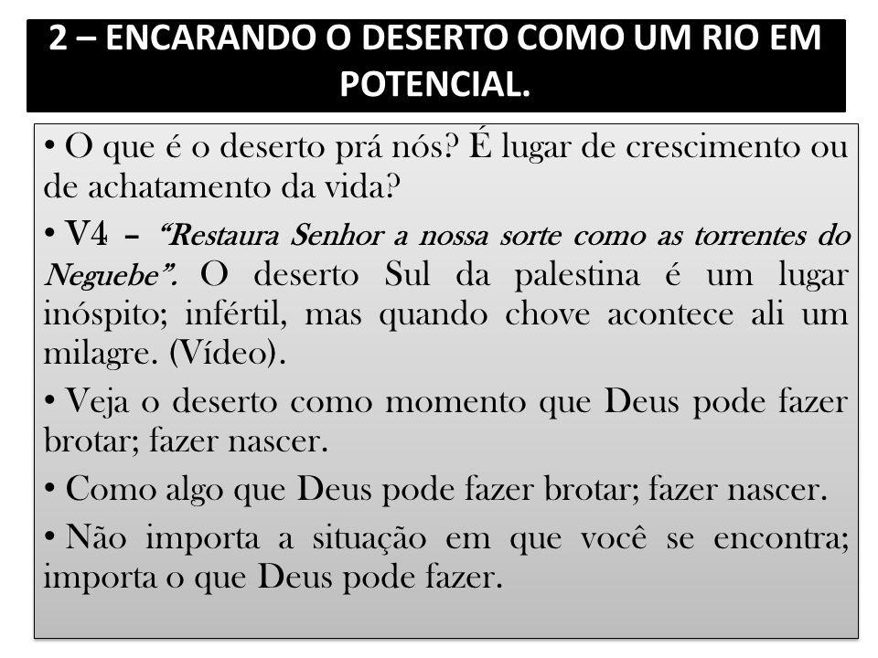 2 – ENCARANDO O DESERTO COMO UM RIO EM POTENCIAL.