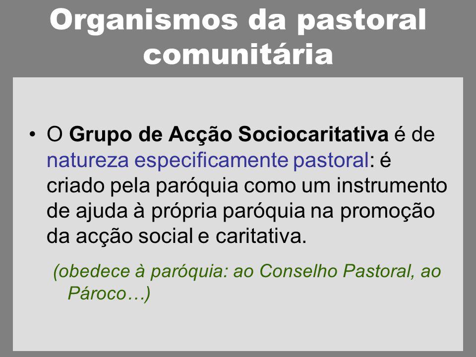 Organismos da pastoral comunitária