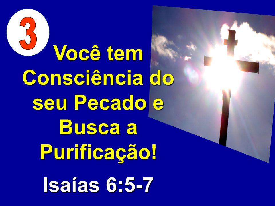 Você tem Consciência do seu Pecado e Busca a Purificação!