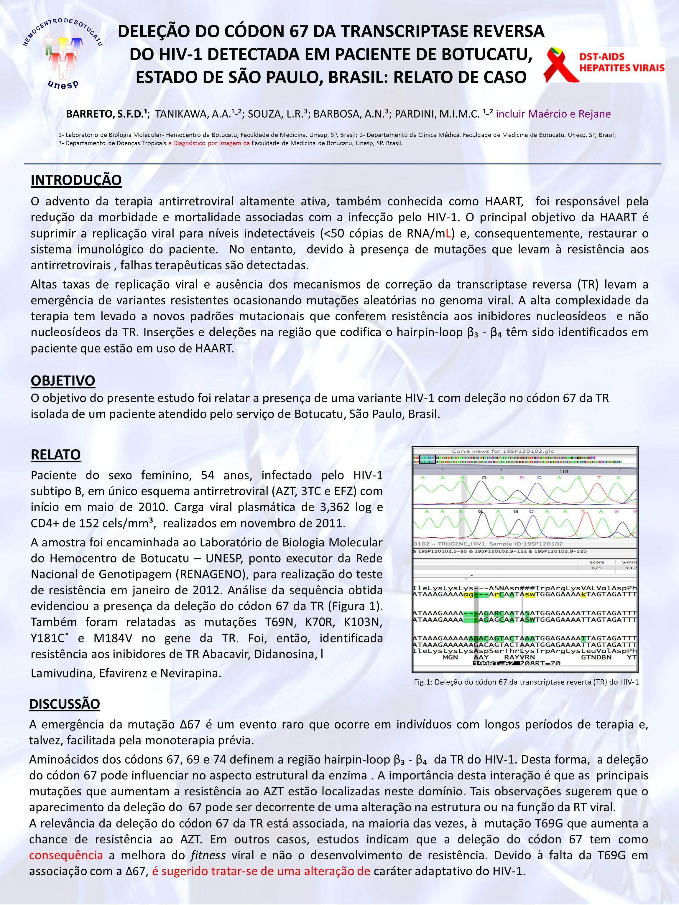 DELEÇÃO DO CÓDON 67 DA TRANSCRIPTASE REVERSA DO HIV-1 DETECTADA EM PACIENTE DE BOTUCATU, ESTADO DE SÃO PAULO, BRASIL: RELATO DE CASO