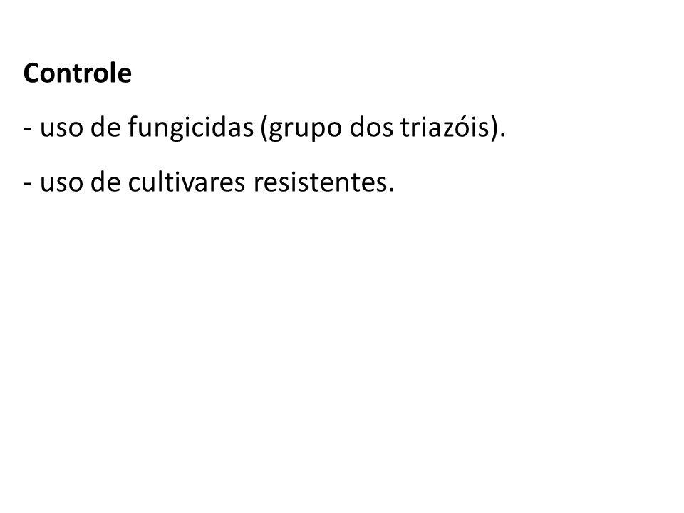 Controle uso de fungicidas (grupo dos triazóis). uso de cultivares resistentes.