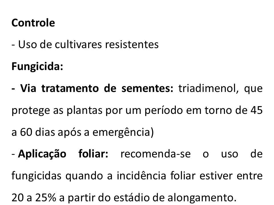 Controle Uso de cultivares resistentes. Fungicida:
