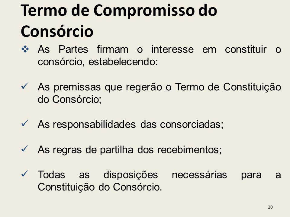 Termo de Compromisso do Consórcio