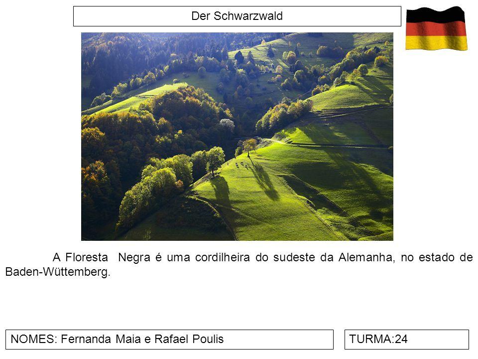 Der Schwarzwald A Floresta Negra é uma cordilheira do sudeste da Alemanha, no estado de Baden-Wüttemberg.