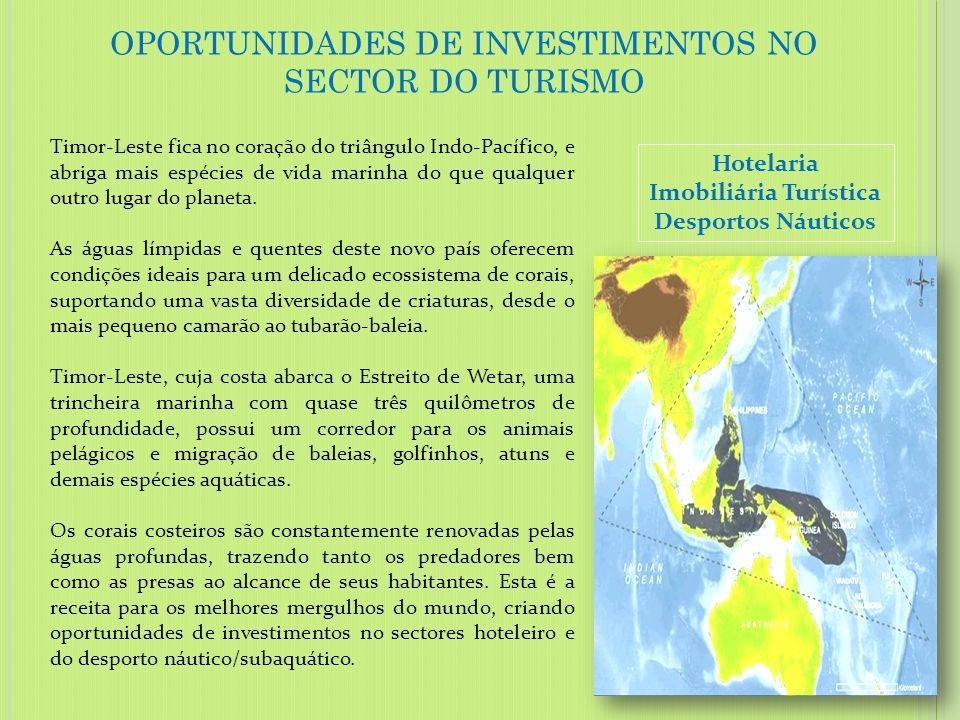 OPORTUNIDADES DE INVESTIMENTOS NO SECTOR DO TURISMO