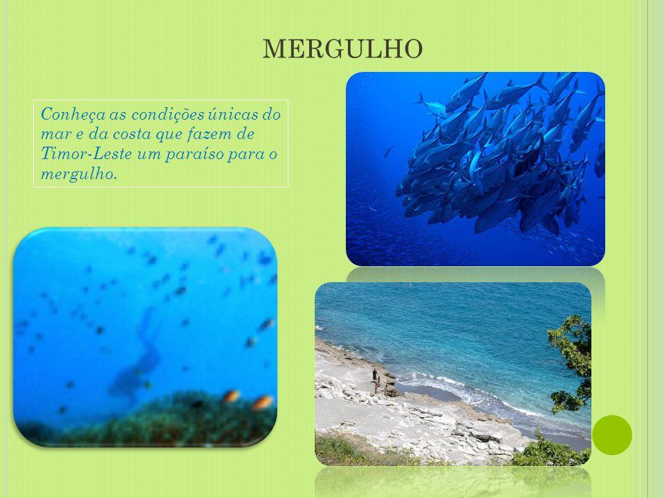 MERGULHO Conheça as condições únicas do mar e da costa que fazem de Timor-Leste um paraíso para o mergulho.