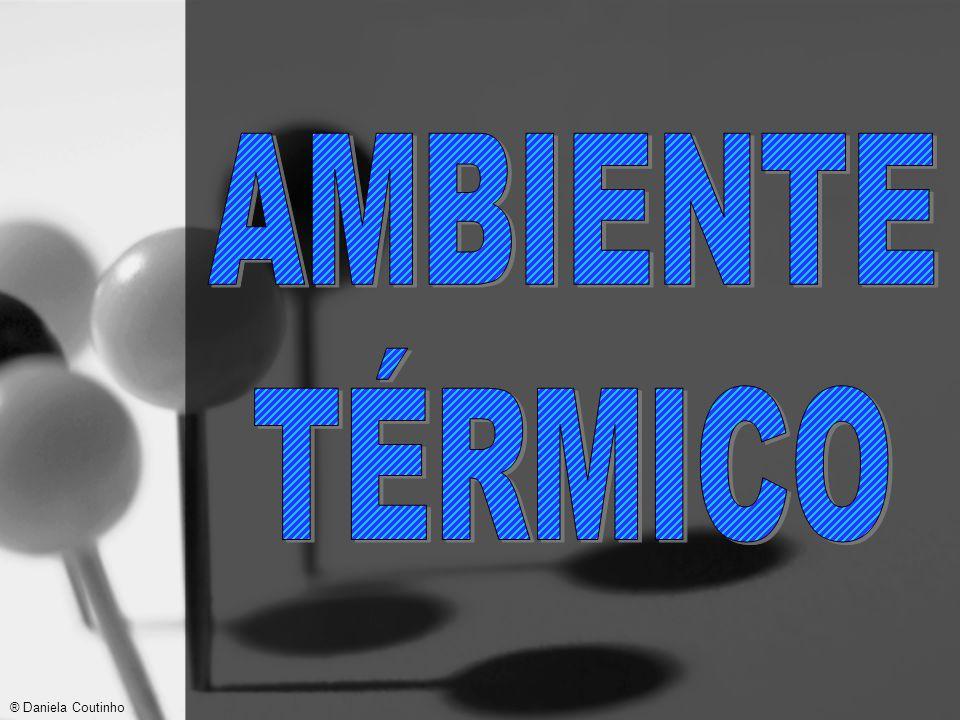 AMBIENTE TÉRMICO ® Daniela Coutinho