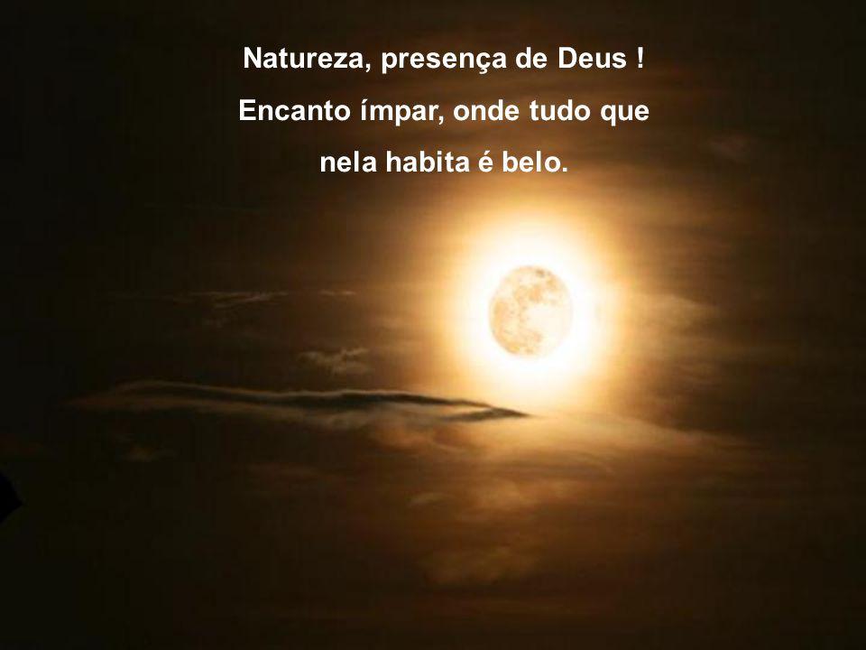 Natureza, presença de Deus ! Encanto ímpar, onde tudo que