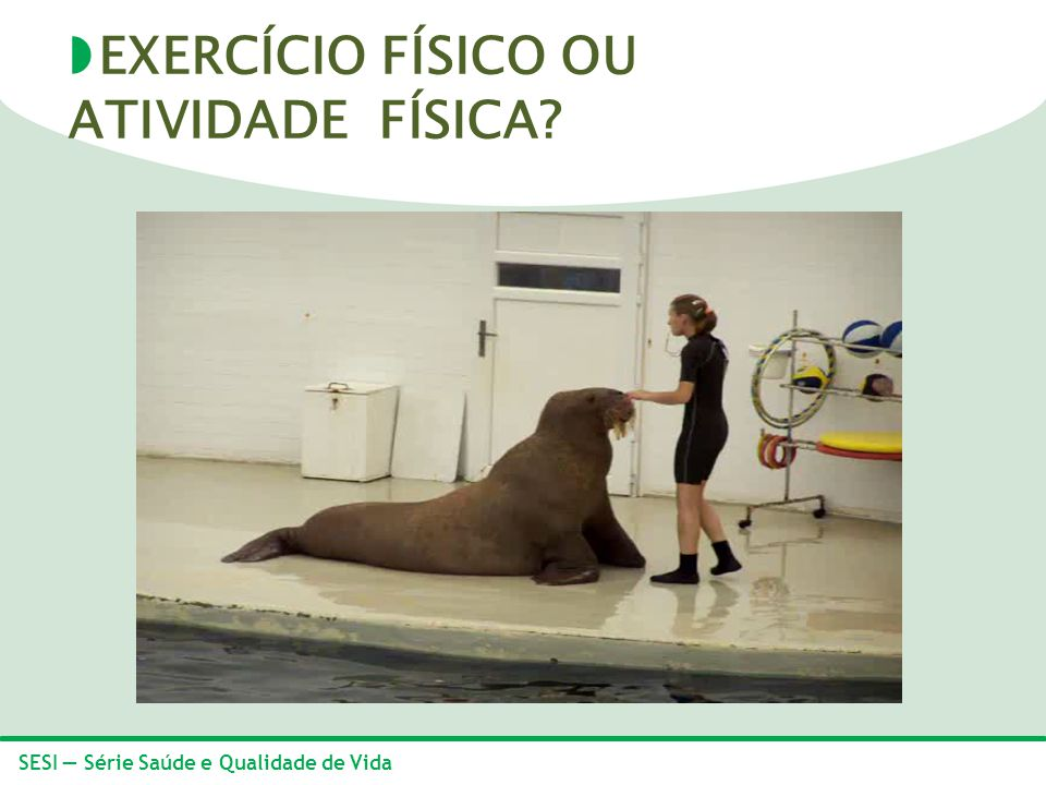 EXERCÍCIO FÍSICO OU ATIVIDADE FÍSICA