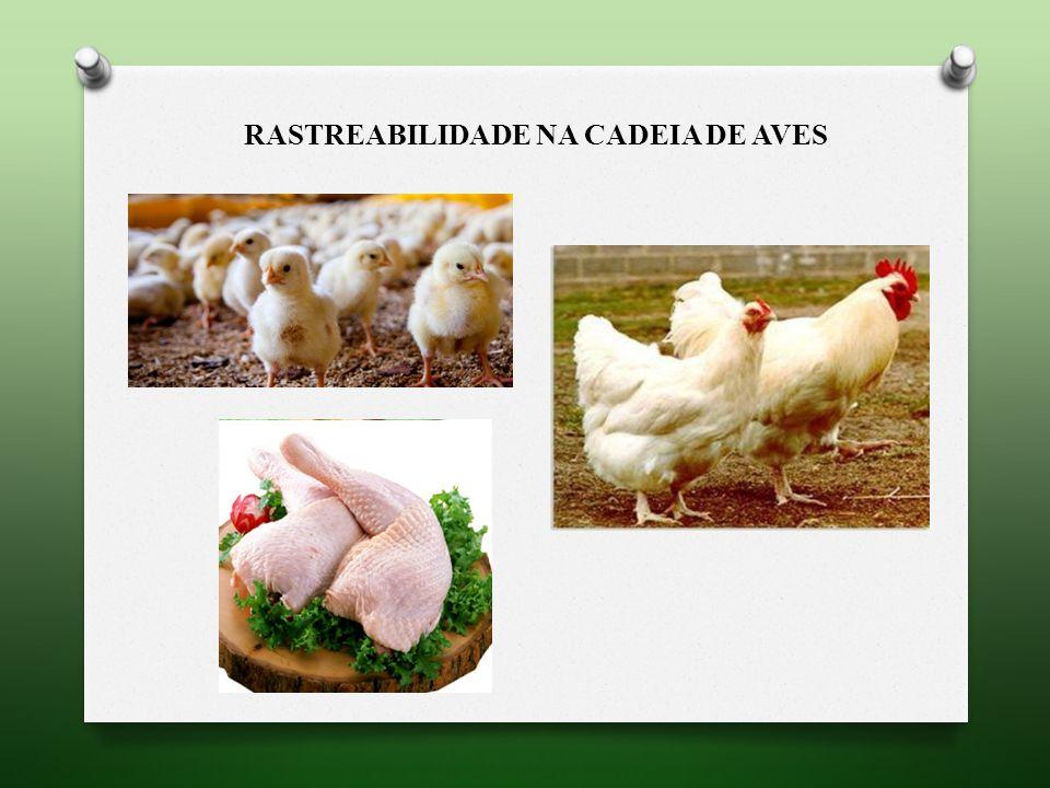 RASTREABILIDADE NA CADEIA de aves