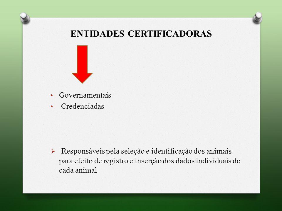 Entidades certificadoras