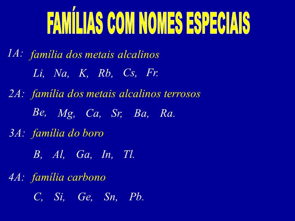 FAMÍLIAS COM NOMES ESPECIAIS
