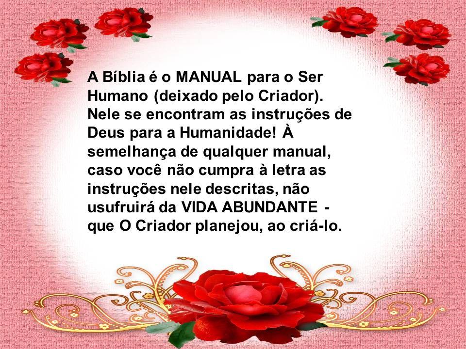 A Bíblia é o MANUAL para o Ser Humano (deixado pelo Criador)