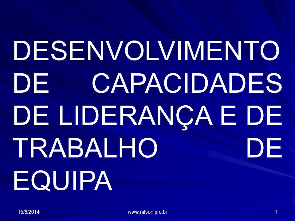 DESENVOLVIMENTO DE CAPACIDADES DE LIDERANÇA E DE TRABALHO DE EQUIPA