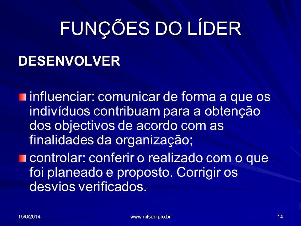 FUNÇÕES DO LÍDER DESENVOLVER