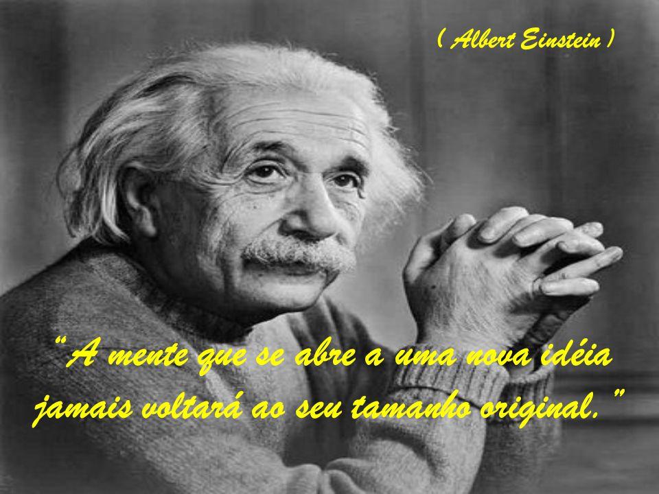 ( Albert Einstein ) A mente que se abre a uma nova idéia jamais voltará ao seu tamanho original.