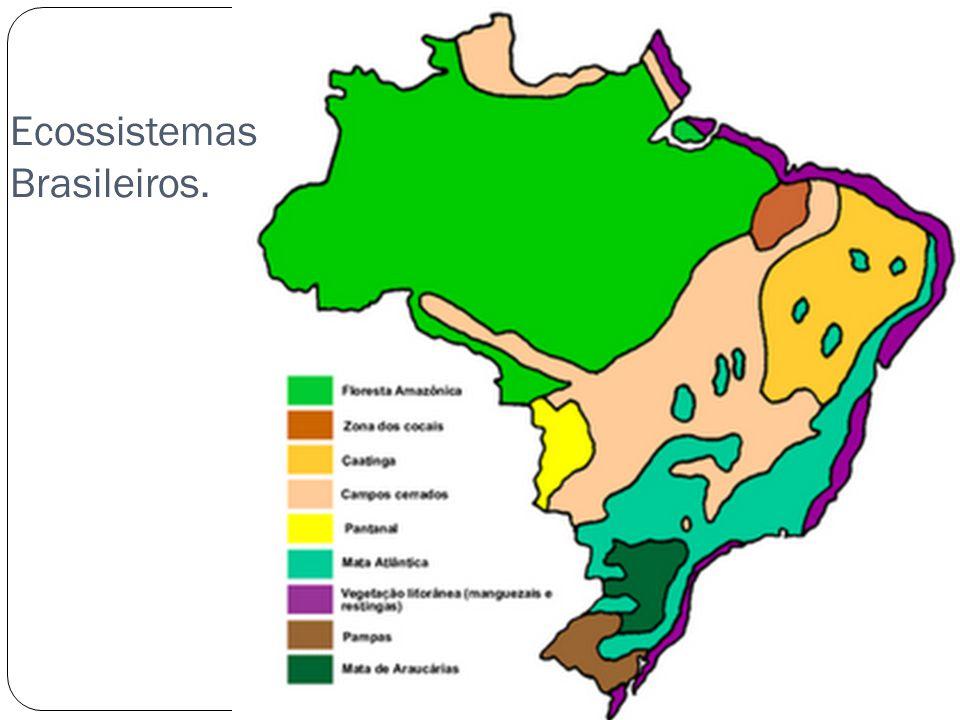 Ecossistemas Brasileiros.