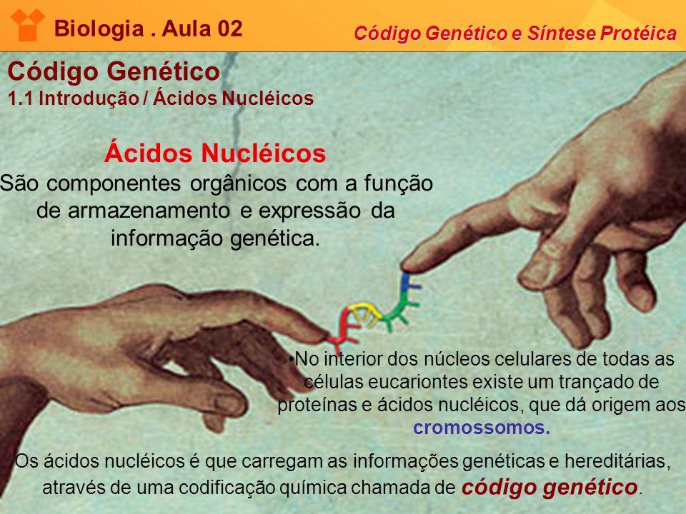 Biologia . Aula 02 Código Genético e Síntese Protéica. Código Genético. 1.1 Introdução / Ácidos Nucléicos.