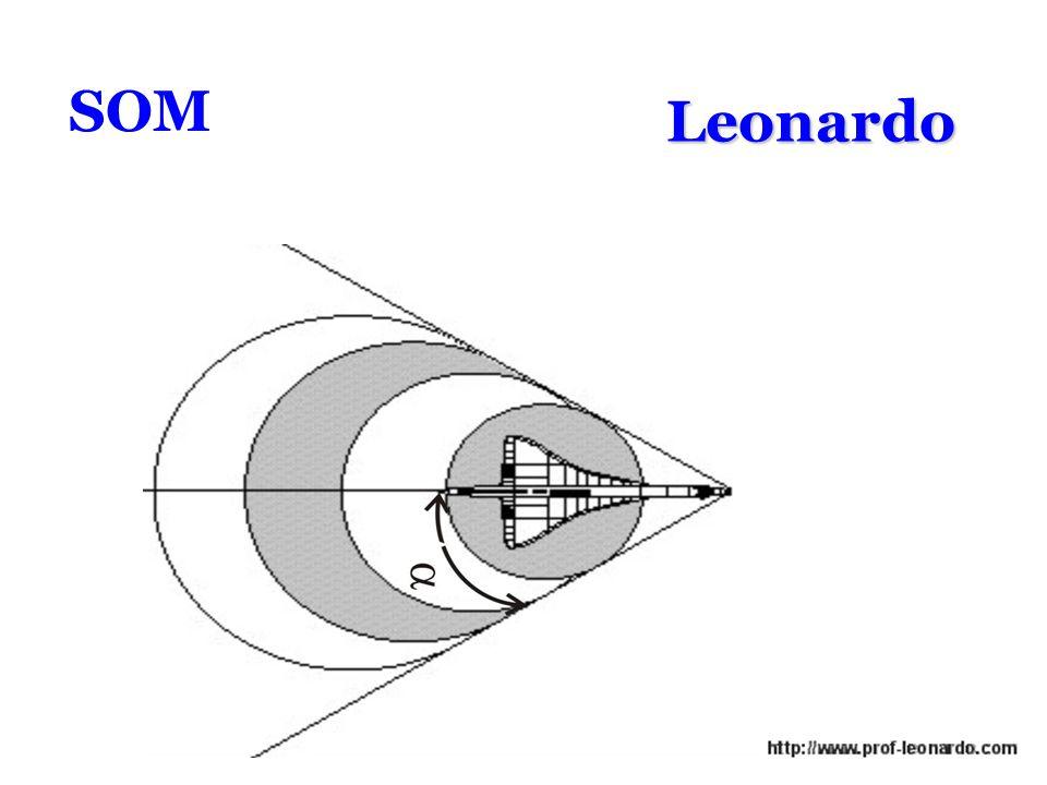 SOM Leonardo
