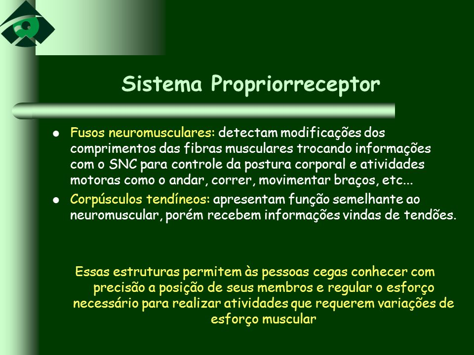 Sistema Propriorreceptor