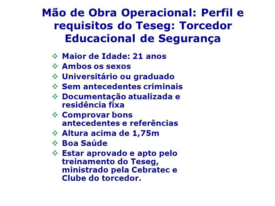 Mão de Obra Operacional: Perfil e requisitos do Teseg: Torcedor Educacional de Segurança