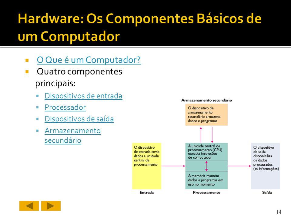 Hardware: Os Componentes Básicos de um Computador