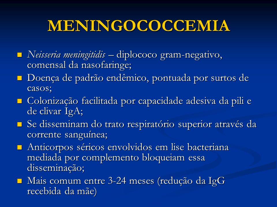 MENINGOCOCCEMIA Neisseria meningitidis – diplococo gram-negativo, comensal da nasofaringe; Doença de padrão endêmico, pontuada por surtos de casos;