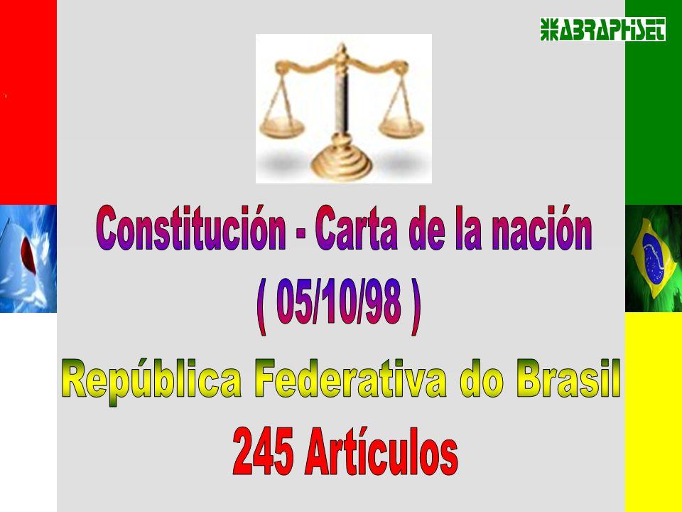 Constitución - Carta de la nación ( 05/10/98 )
