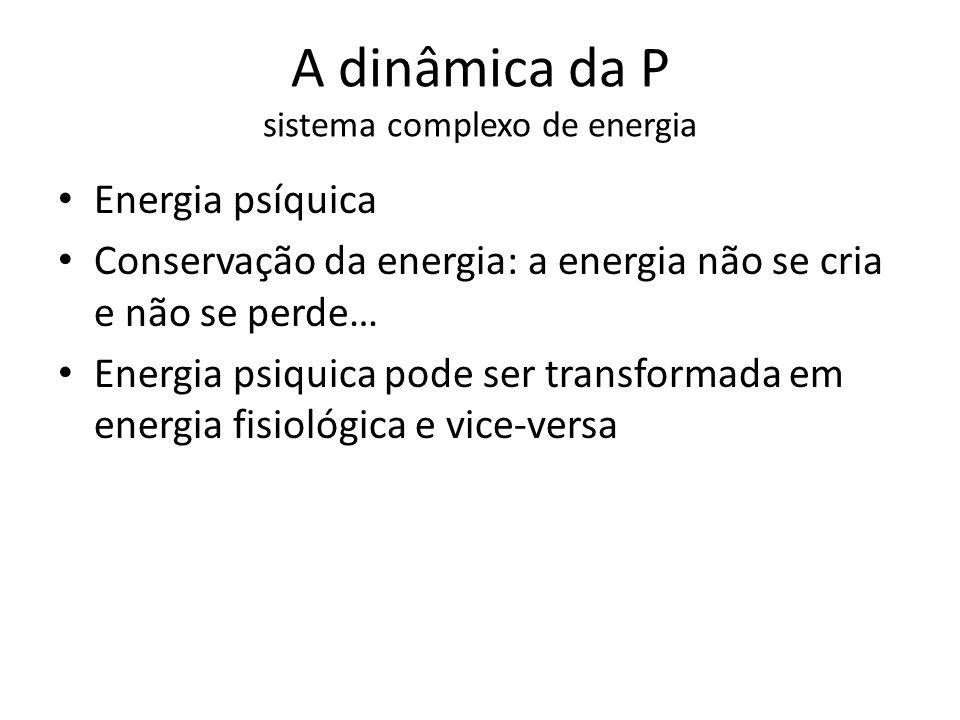 A dinâmica da P sistema complexo de energia