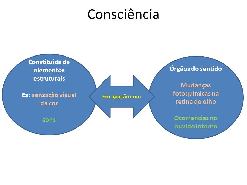 Consciência Constituida de elementos estruturais