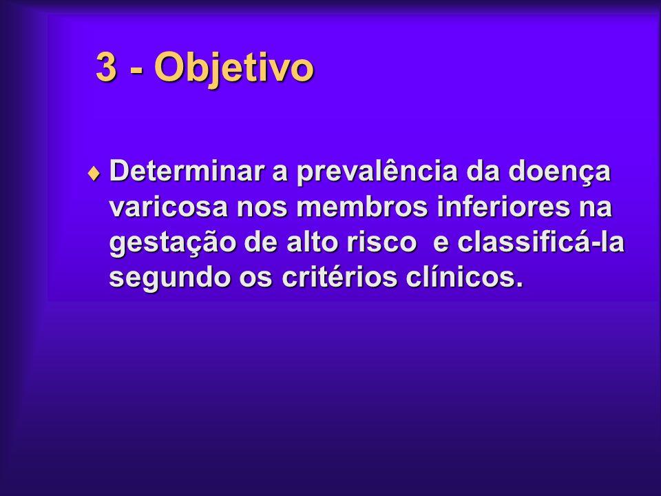 3 - Objetivo