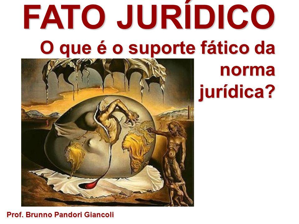 FATO JURÍDICO O que é o suporte fático da norma jurídica