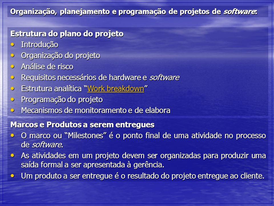 Estrutura do plano do projeto Introdução Organização do projeto