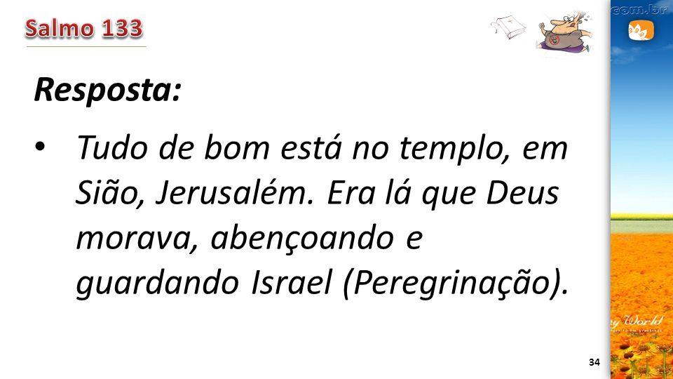 Salmo 133 Resposta: Tudo de bom está no templo, em Sião, Jerusalém. Era lá que Deus morava, abençoando e guardando Israel (Peregrinação).