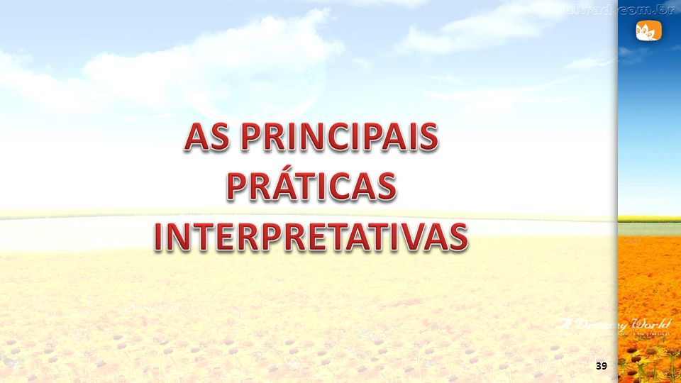 AS PRINCIPAIS PRÁTICAS INTERPRETATIVAS