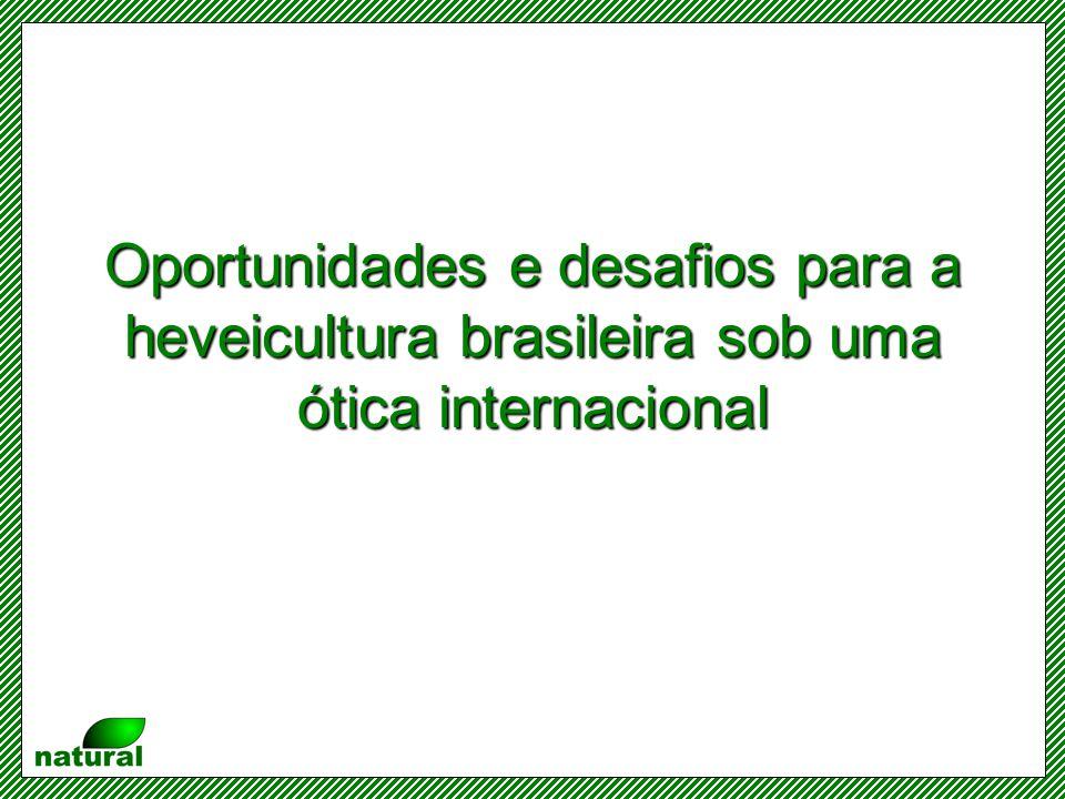 Oportunidades e desafios para a heveicultura brasileira sob uma ótica internacional