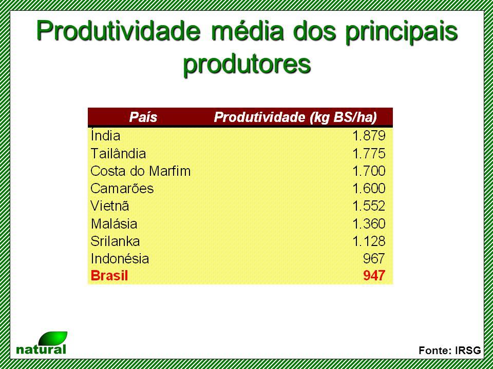 Produtividade média dos principais produtores
