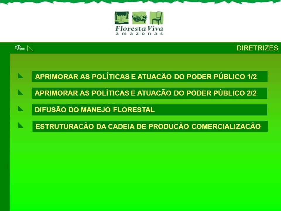  DIRETRIZES APRIMORAR AS POLÍTICAS E ATUACÃO DO PODER PÚBLICO 1/2