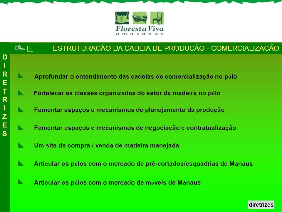  ESTRUTURACÃO DA CADEIA DE PRODUCÃO - COMERCIALIZACÃO DIRETRIZES