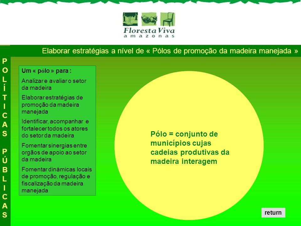 POLÍTICAS PÚBLICAS Elaborar estratégias a nível de « Pólos de promoção da madeira manejada » Um « pólo » para :