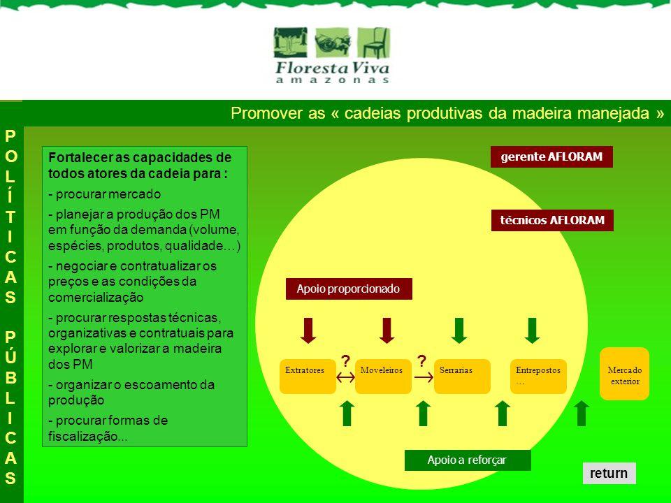 Promover as « cadeias produtivas da madeira manejada »